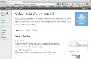 Welcome to Wordpress 3.3 : New dashboard , new Style , new cool look