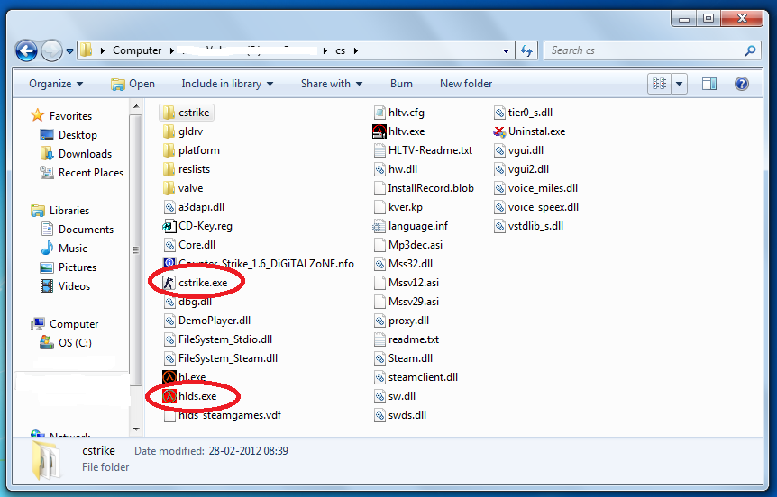 Counter strike 1.6 Folder containing server file and game file